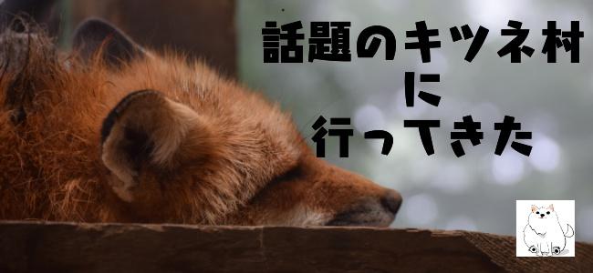 f:id:daigakukabuu:20170826012242j:plain