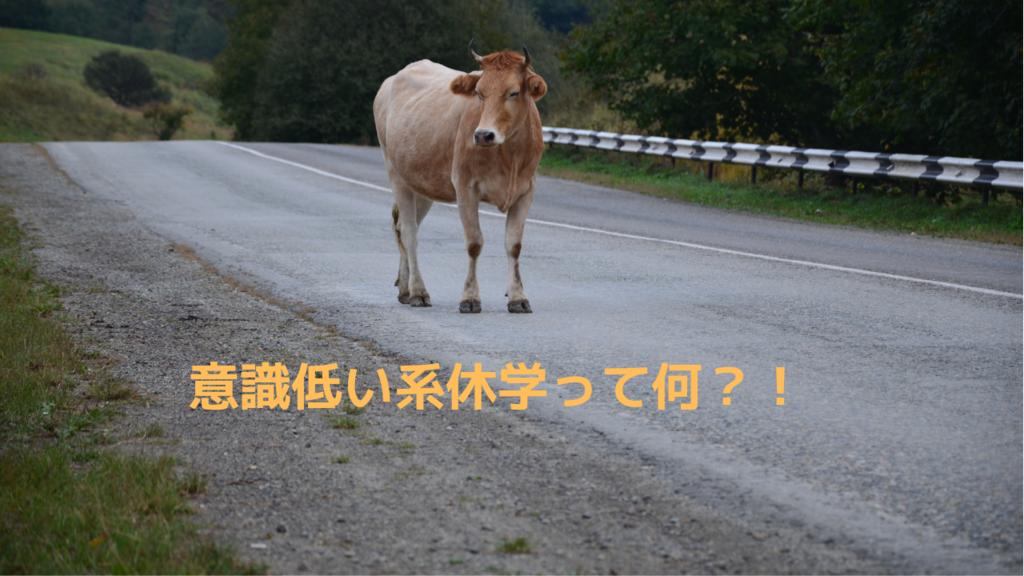 f:id:daigakuseino:20190128203345p:plain