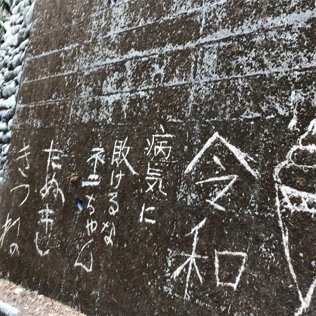 f:id:daigakuseino:20190414222238j:image