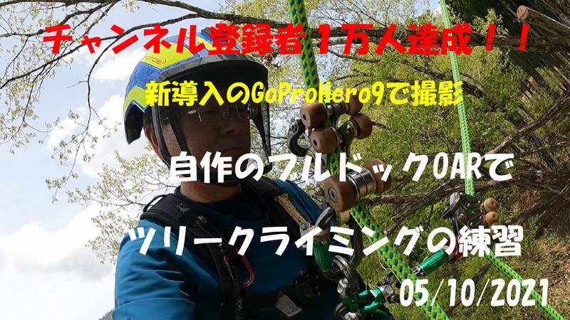f:id:daigentanoen:20210511212422j:plain