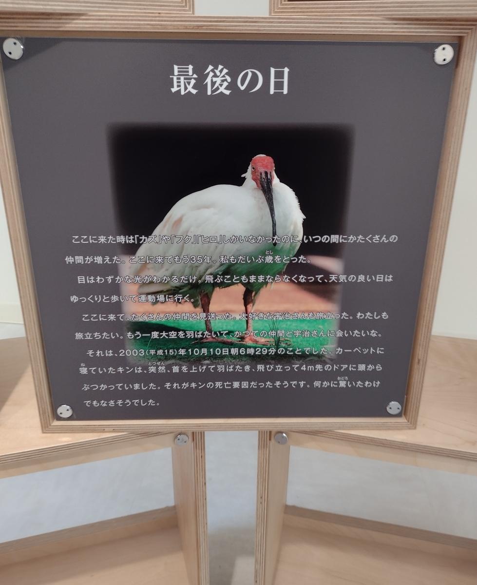 f:id:daigo520:20210613184835j:plain