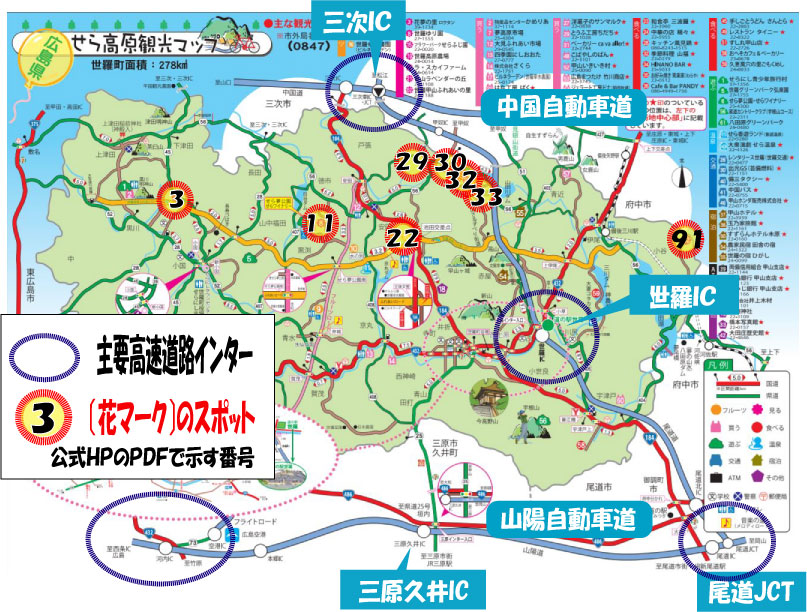 f:id:daigoro3388:20200427113216j:plain