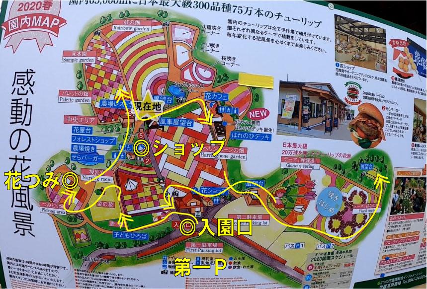 f:id:daigoro3388:20200427211758j:plain