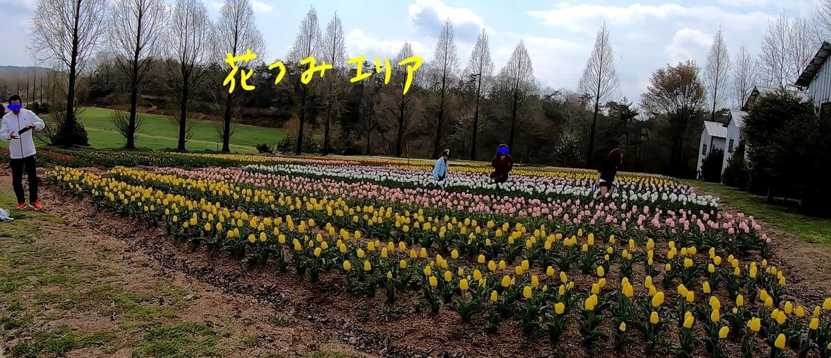 f:id:daigoro3388:20200427213832j:plain
