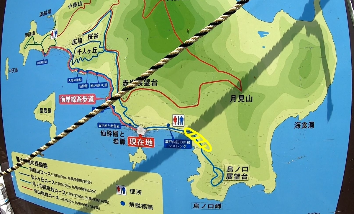 f:id:daigoro3388:20200504150054j:plain