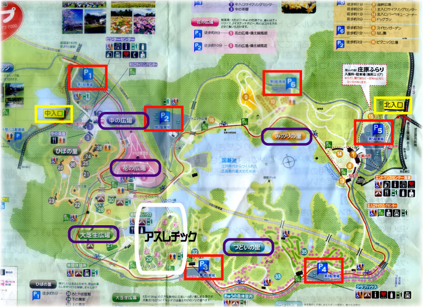 f:id:daigoro3388:20200518141753j:plain