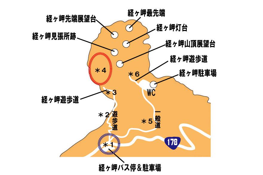 f:id:daigoro3388:20200707233405j:plain