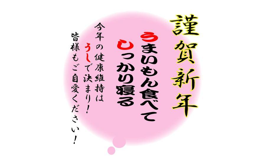 f:id:daigoro3388:20210101084611j:plain