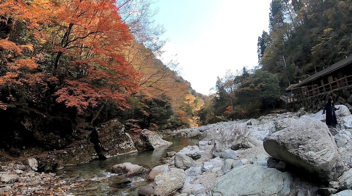 f:id:daigoro3388:20210124081603j:plain
