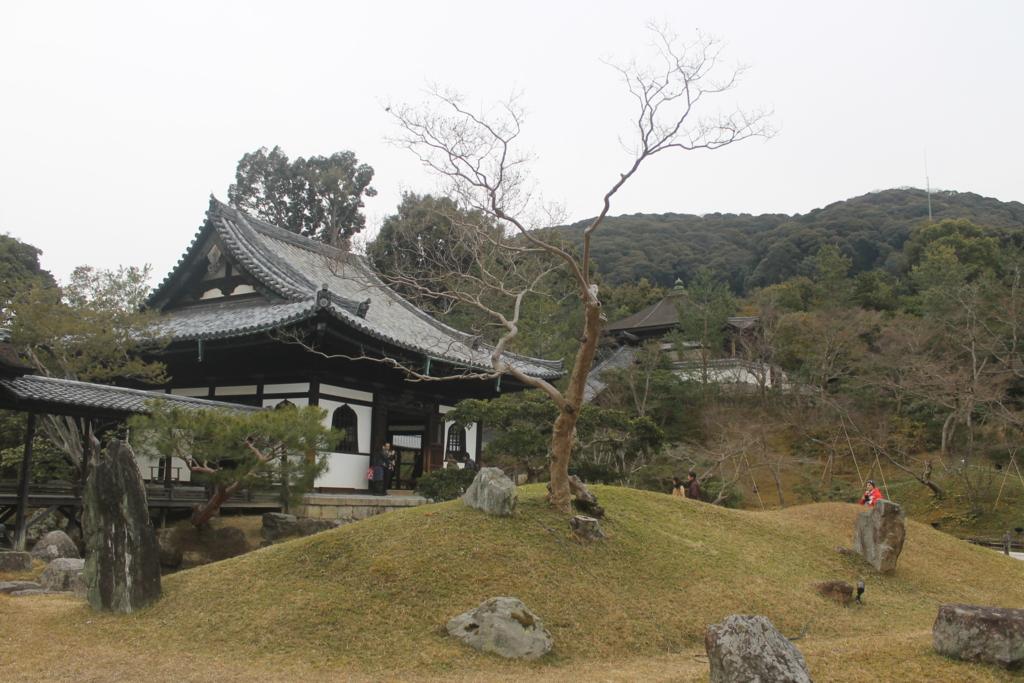 f:id:daihida:20170322171805j:plain