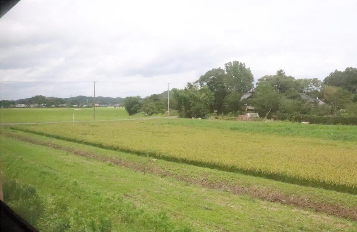 f:id:daihida:20200725224122j:plain