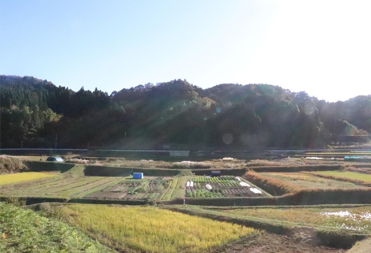 f:id:daihida:20201122133359j:plain