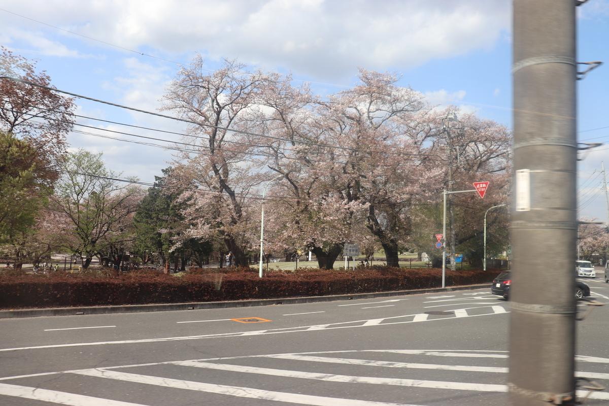 f:id:daihida:20210403213819j:plain