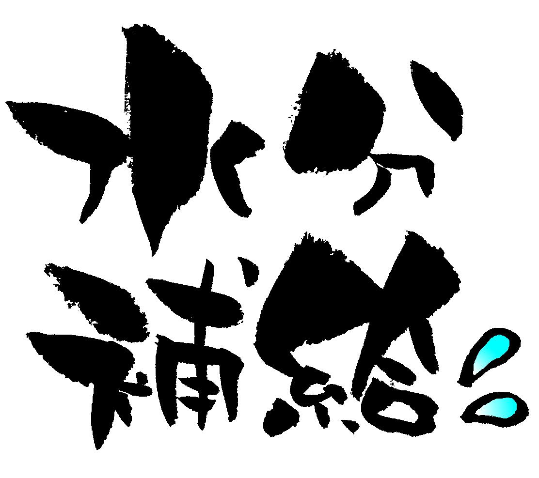 f:id:daiki-em:20190808181509j:plain