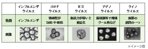 f:id:daiki-em:20200807174448p:image