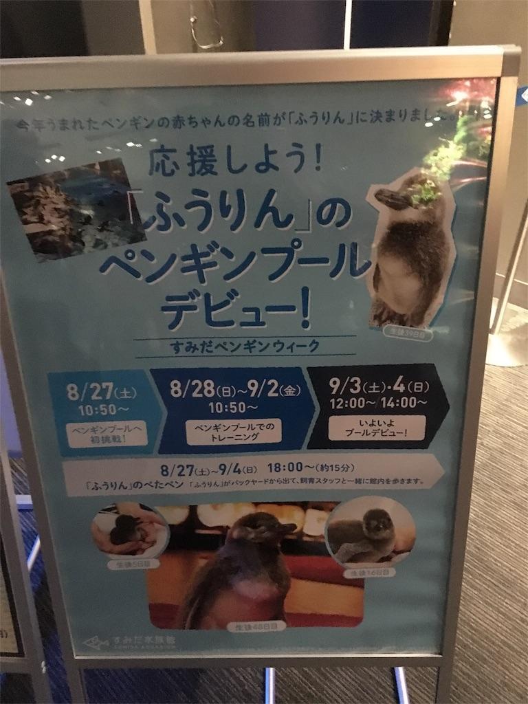 f:id:daiki_bassist:20160816225751j:image