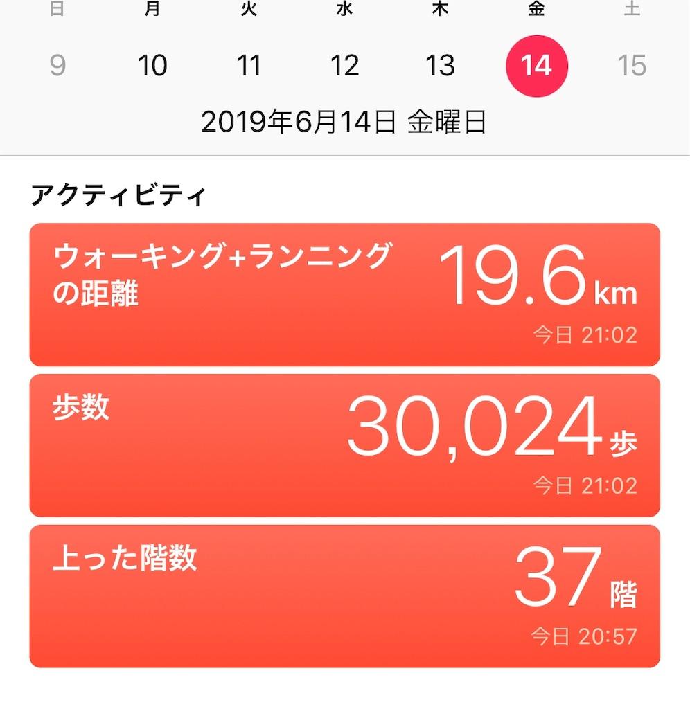 f:id:daiki_bassist:20190624102406j:image