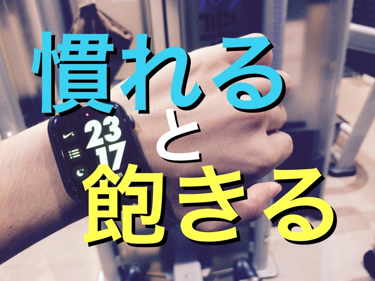 f:id:daiki_futagami:20191005152913j:plain