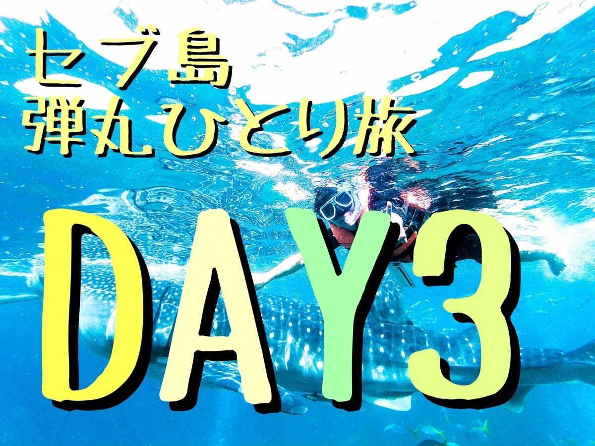 f:id:daiki_futagami:20191005161752j:plain