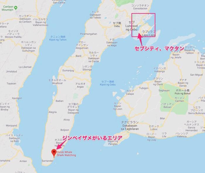 f:id:daiki_futagami:20191005162328j:plain