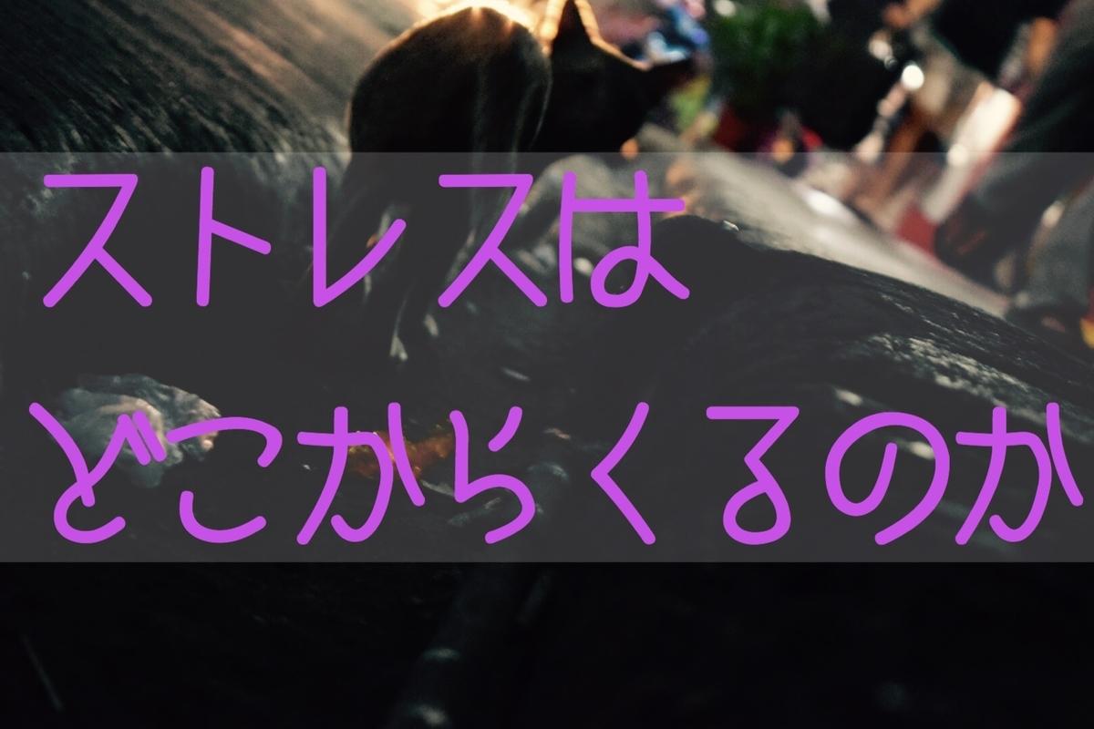 f:id:daiki_futagami:20191011161236j:plain
