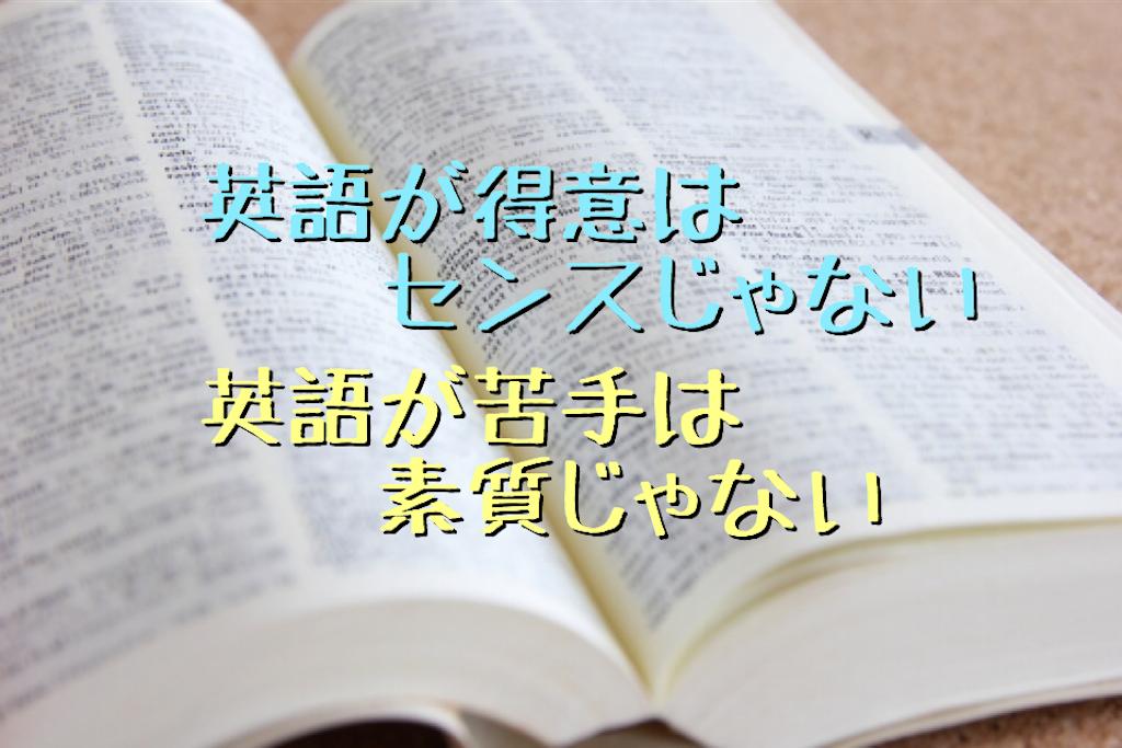 f:id:daiki_futagami:20191023113113p:image
