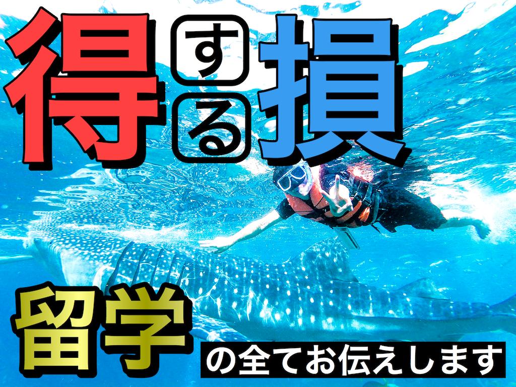 f:id:daiki_futagami:20200211160607p:image
