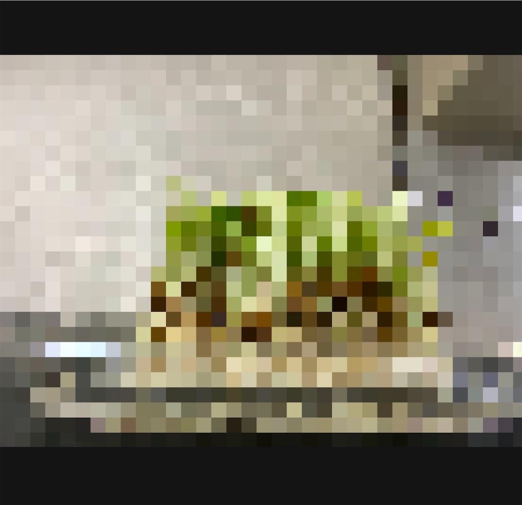 f:id:daiki_futagami:20200326125304j:image