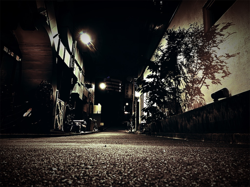 f:id:daiki_futagami:20200627230529j:image