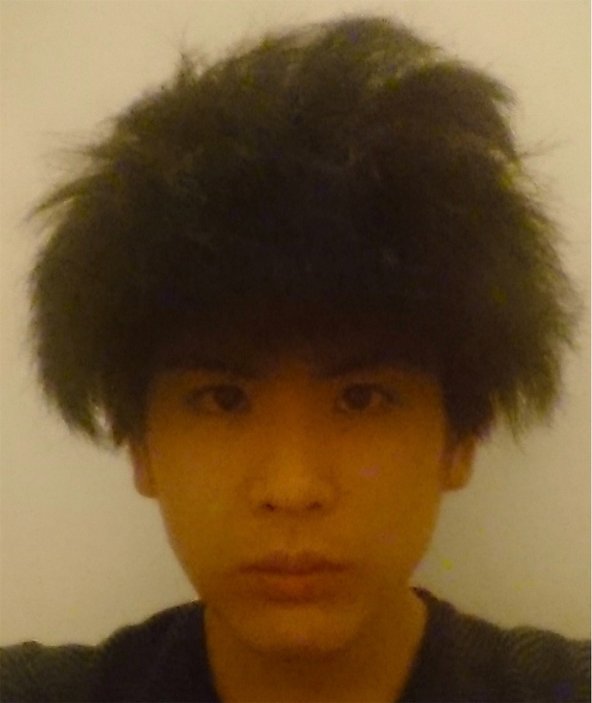 f:id:daiki_futagami:20200830165235j:image