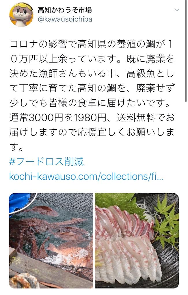 f:id:daiki_futagami:20200917171929j:image