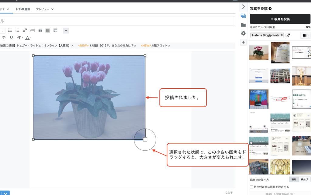 f:id:daikoku-77:20190108214755p:plain