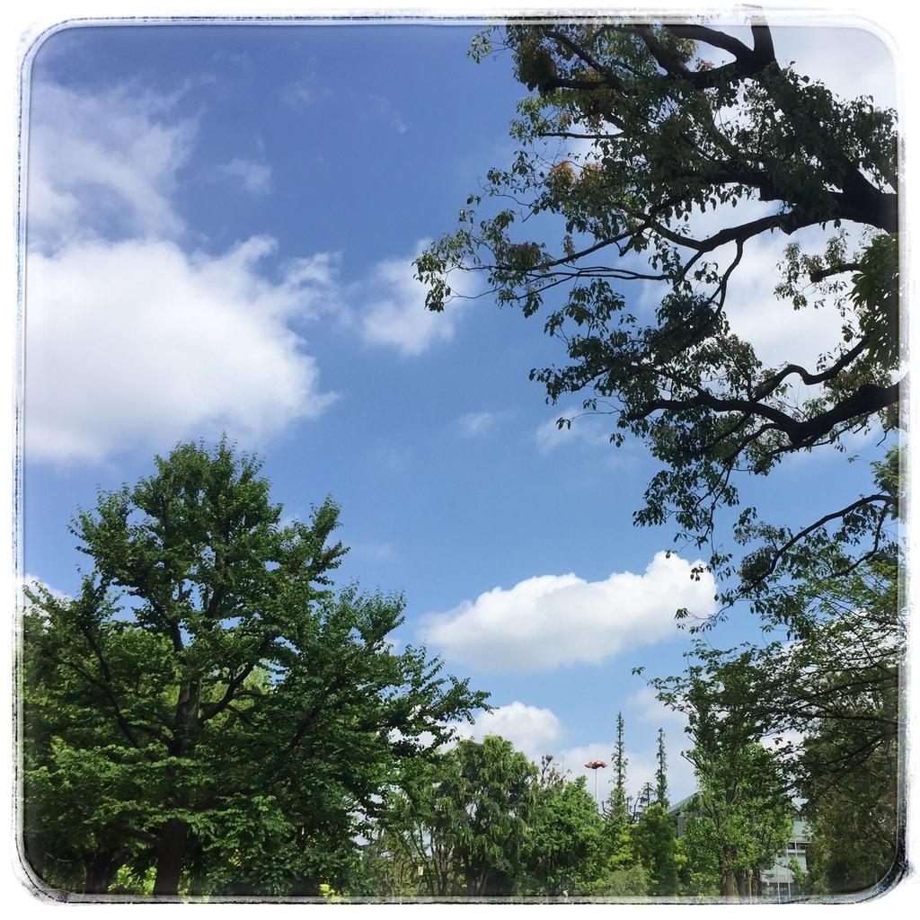 f:id:daikoku-77:20190111222533j:plain