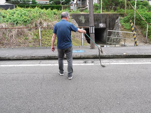 f:id:daikokuinsatsusho:20200715160900j:plain