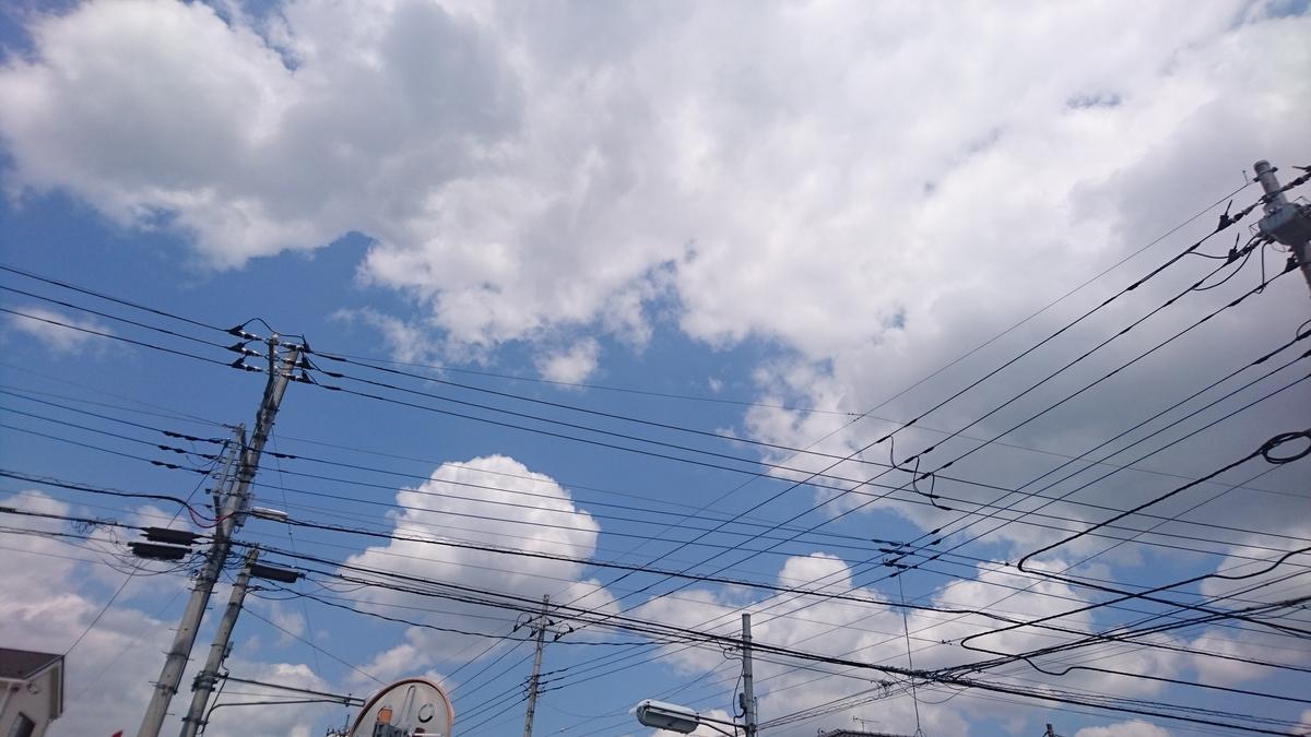 f:id:daikonnorosi710:20190525114837j:plain