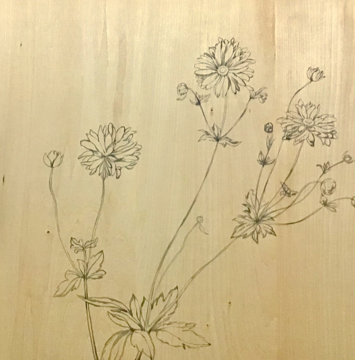f:id:daikouji:20201216112434j:plain