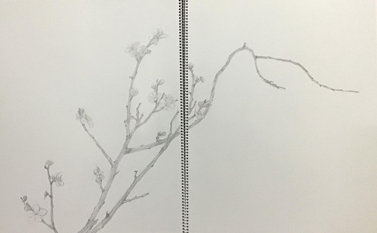 f:id:daikouji:20210219162819j:plain