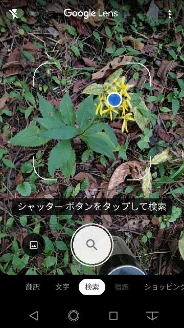 f:id:daikous:20200929150453j:plain