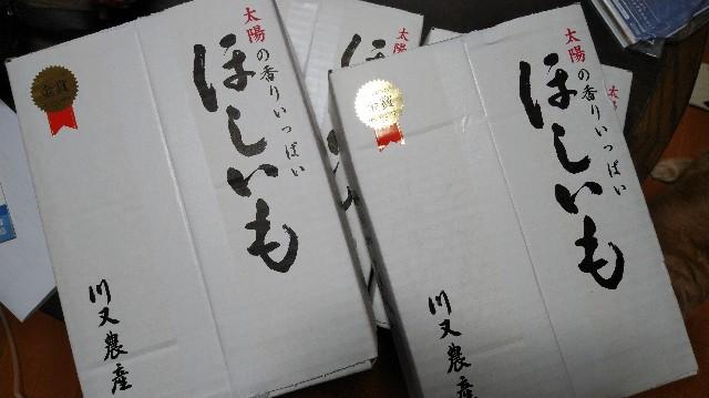 f:id:daikous:20201228102902j:plain