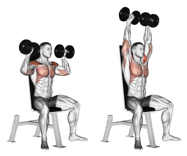 肩トレーニングのショルダープレスをしている男性