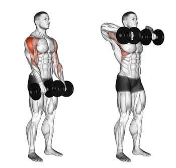 肩トレーニングのアップライトロウをしている男性