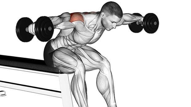 肩トレーニングのリアレイズをしている男性