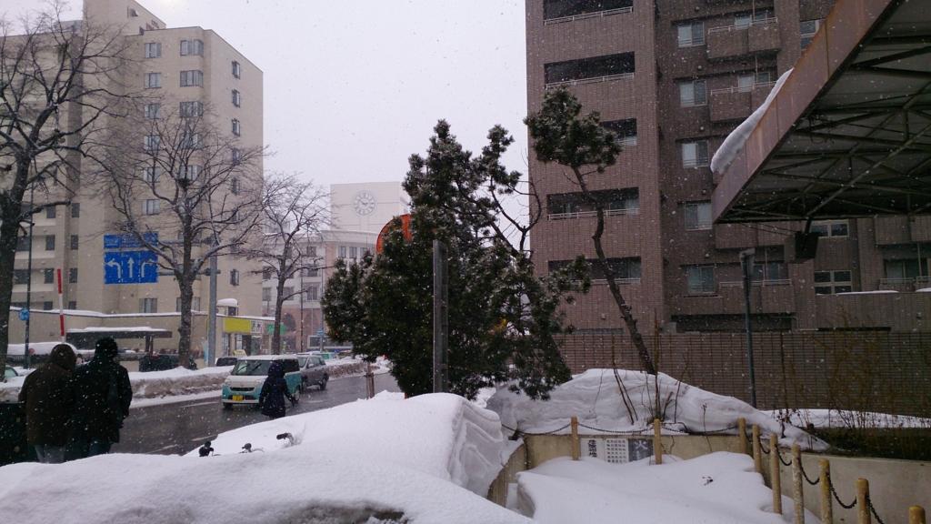 f:id:daiouoka:20170227165317j:plain