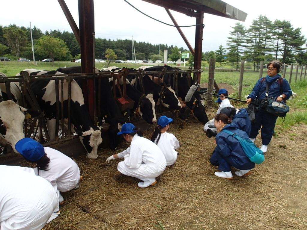 f:id:dairycow2017:20170813220247j:plain