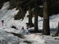 雪の大神山神社参道