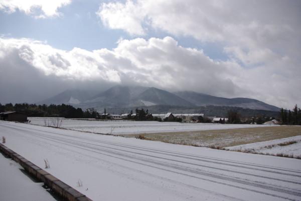 2009年大晦日降り始めた雪