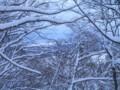 冬の横手道日本海