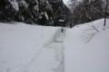 雪の大山寺参道