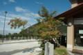 ナナカマド大山自然歴史館