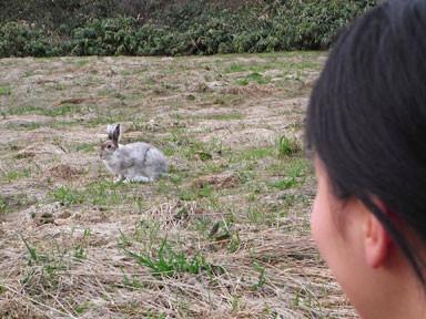 f:id:daisetsuzan:20100515215235j:image